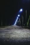 De invloed van licht op de natuur Het Natuurpalet De Raetsingel 5 Boxmeer