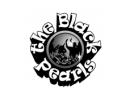 Volgende optreden van Bigband The Black Pearls is op donderdagavond 18 september '14
