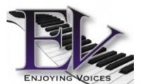 Enjoying Voices