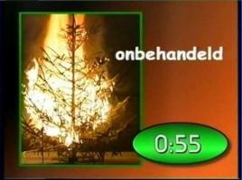 Tips voor een brandveilige kerstboom