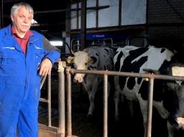 Boer Sjaak is weer bij zijn koeien, maar hij zou zo weer actievoeren