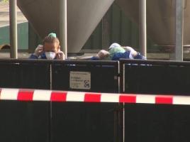Opnieuw nertsenbedrijf in Venhorst besmet met corona, dieren vertoonden ziekteverschijnselen